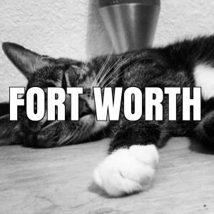 fortworthiconedited