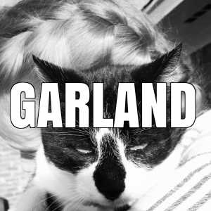garland vaccination clinics