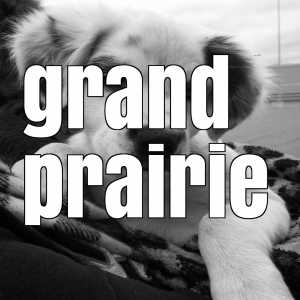 grand prairie vaccination clinics