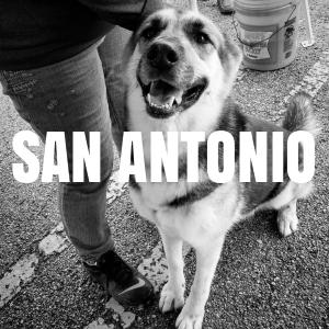 San Antonio Vax Clinics